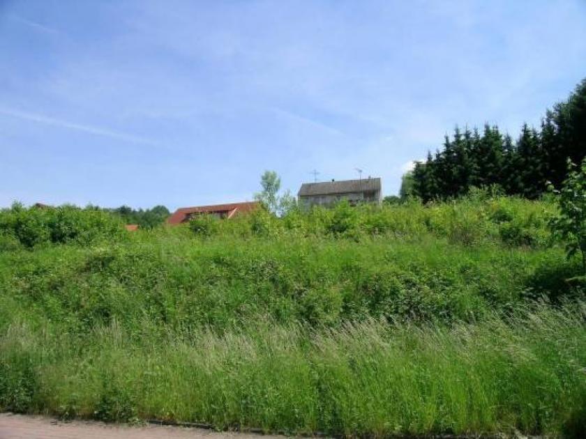 Gunstiger Bauplatz In Burghaun Voll Erschlossen
