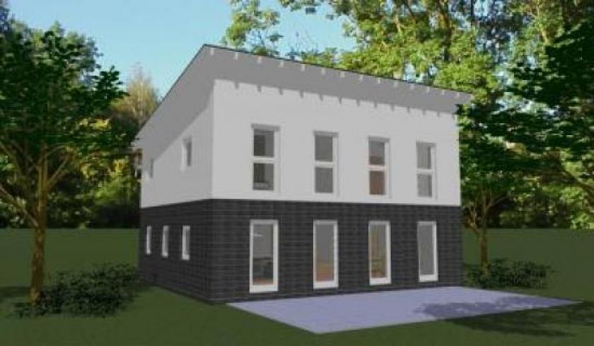 Grosszugiges Modernes Haus Mit Pultdach